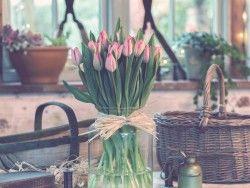 Download Wallpaper 1280×960 Tulips, Bouquet, Vase 1280×960 HD Background