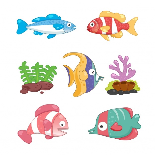 Coloured fishes collection