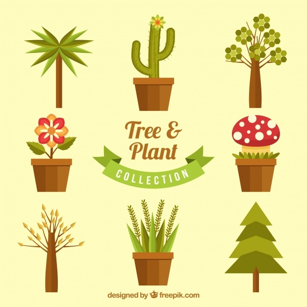 Flat pack of decorative trees and plants