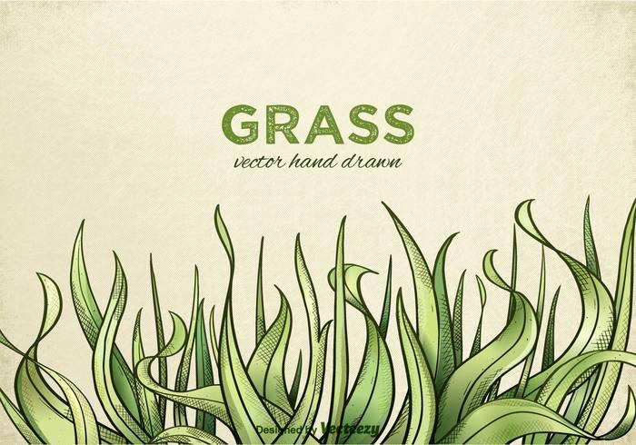 Free Hand Drawn Grass Vector