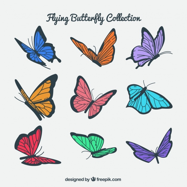 Pack of colored butterflies flying