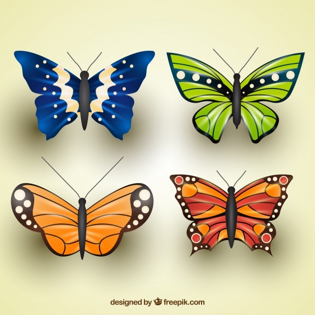 Pack of realistic butterflies with great designs