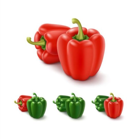 Red with green pepper vector 03