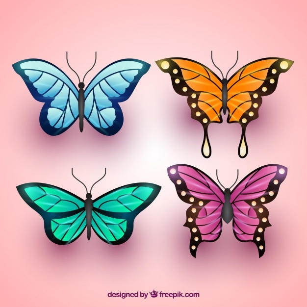 Variety of colored butterflies