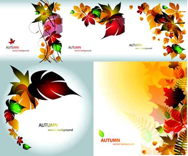 Colorful leaf vector material