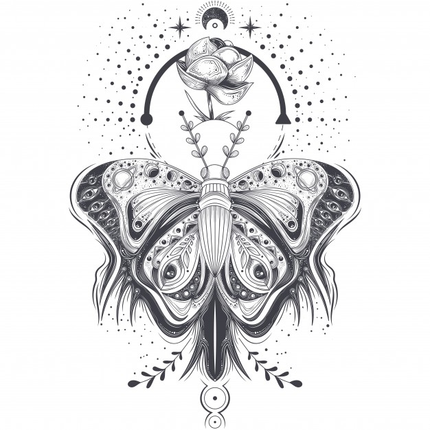 Vector illustration of a sketch, tattoo art butterfly in abstract style, mystical, astrological  ...