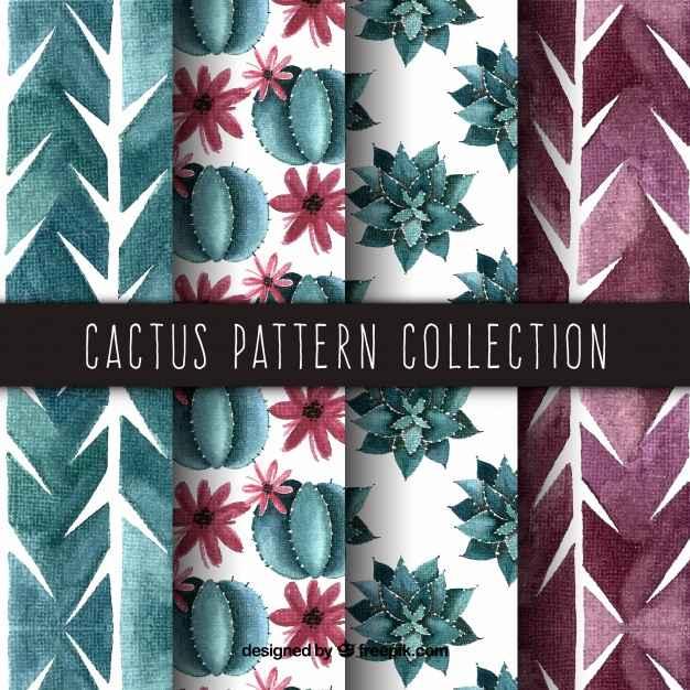Elegant pack of watercolor cactus patterns